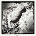 Large drying wombat poo on granite rock. Cowbaw State Forest, Victoria. Dec 2011.